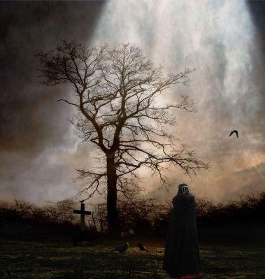 november-garden-of-melancholy